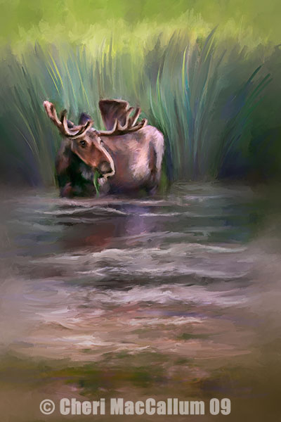 Moose_finished-copy