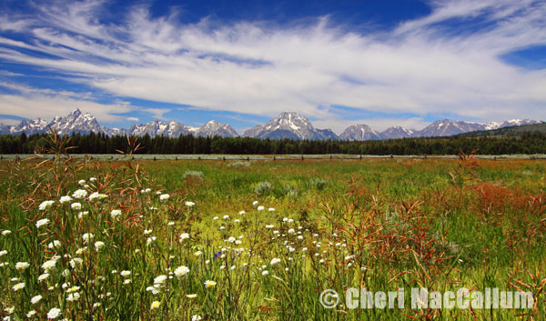 Tetons_pano-copy
